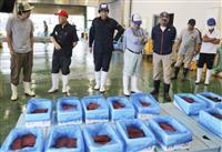商業捕鯨再開後初の入札 和歌山・太地町、鯨肉