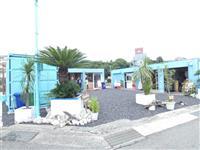 コンテナ使い商業施設 チャレンジモール福良「CAP」、島内食材の飲食5店オープン 兵庫