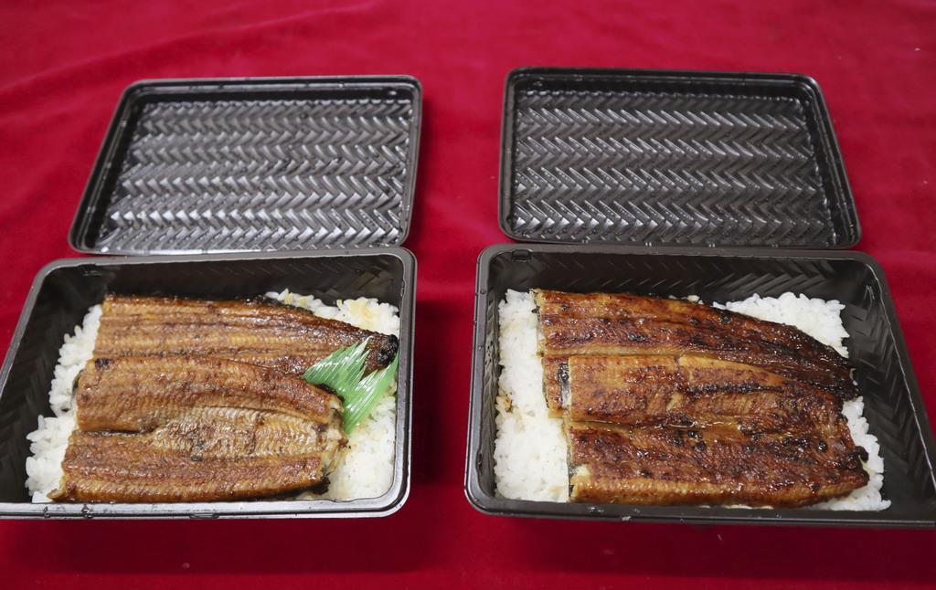 人工孵化させて育てたウナギ(左)と、天然稚魚を育てた一般的なウナギのかば焼き