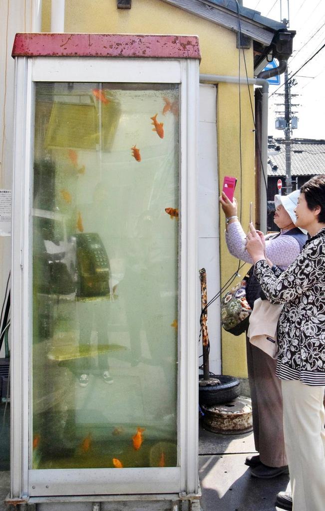 奈良県大和郡山市の柳町商店街の一角に設置されていた「金魚電話ボックス」
