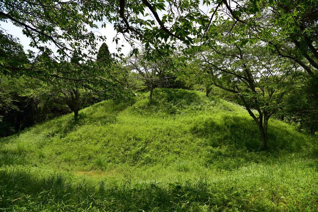 昭和31年の発掘調査で多量の埴輪が出土した「殿塚・姫塚古墳」=千葉県横芝光町