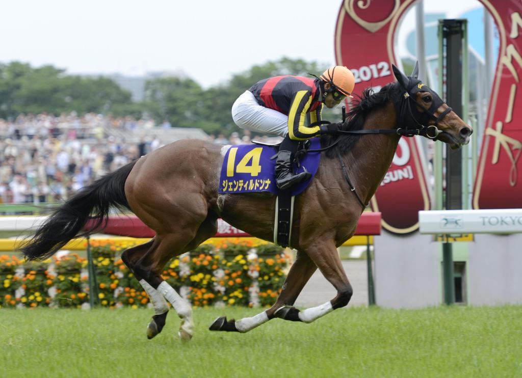 カルノーマズレディの孫にあたるジェンティルドンナ=2012年5月、東京オークス