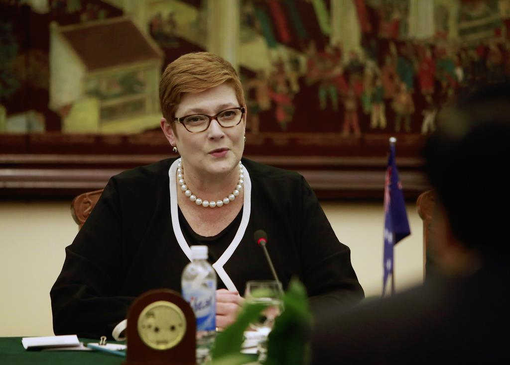 オーストラリアのペイン外相兼女性担当相(6月12日=ハノイ、AP)。豪州国内で後を絶たない女性への暴力に警鐘を鳴らしている