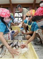 滋賀の伝統食・ふなずしに親しんで 近江八幡で小学生が挑戦