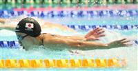 池江の不在埋める力泳 世界水泳女子400Mリレー