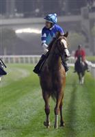 シュヴァルグランは馬番1 英国競馬のキングジョージ
