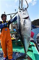 【高論卓説】漁師志望者に「アキバ」の若者 養殖シフトで薄れる3Kイメージ 平松庚三