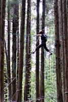 【高論卓説】健康効果で誘客 森林浴に見る地方の可能性 吉田就彦