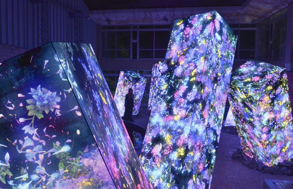 佐賀県武雄市の「御船山楽園」で開かれているデジタルアート展「かみさまがすまう森」