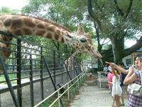 【FIGHT9日和】園長ガイドで触れ合いも 宇都宮動物園