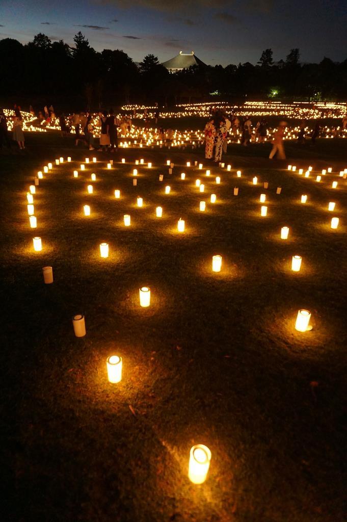 古都の夏、光で彩る「なら燈花会」