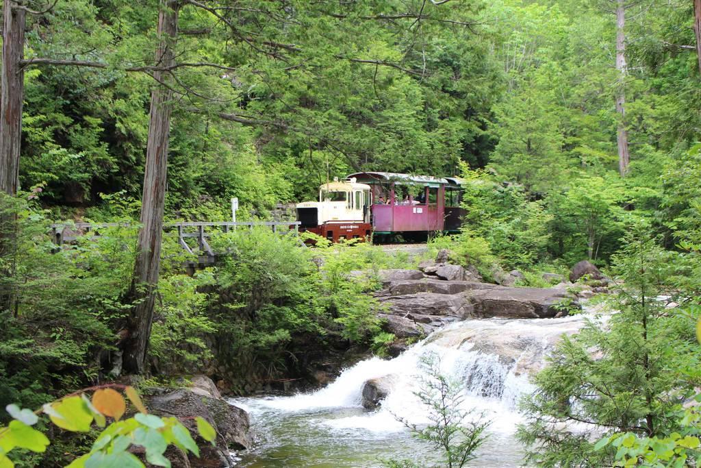 森林鉄道は、ヒノキなどが広がる樹林を巡る。すがすがしい心持ちにしてくれること請け合いだ=長野県上松町(松本浩史撮影)
