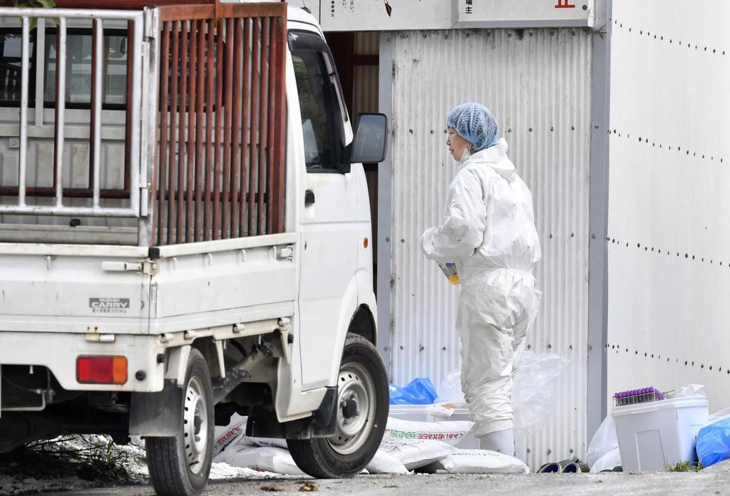 豚コレラが発生した養豚場付近に立つ防護服姿の作業員=6月29日、愛知県西尾市