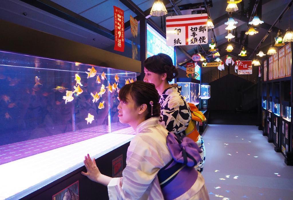「レトロかわいい」金魚を楽しめる「東京金魚ワンダーランド2019」=墨田区のすみだ水族館(鈴木美帆撮影)