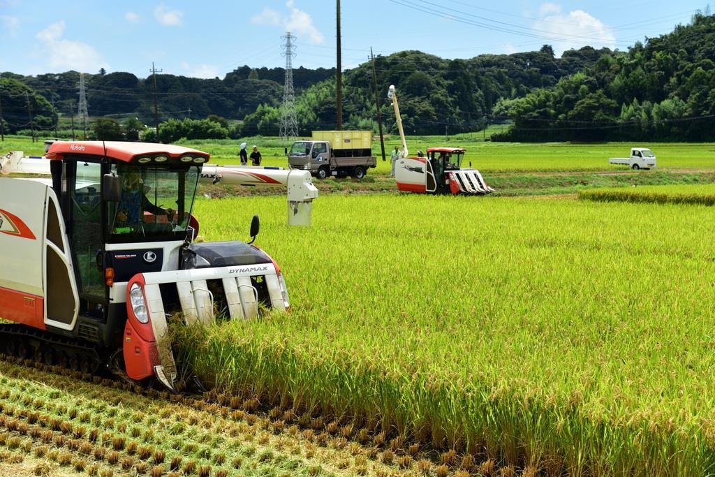 長梅雨の影響で昨年より1週間ほど遅れて稲刈りが始まった=13日、東庄町(城之内和義撮影)