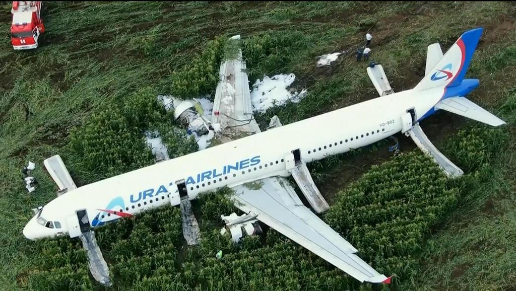 15日、モスクワ郊外の空港近くのトウモロコシ畑に緊急着陸したウラル航空の旅客機(AP)