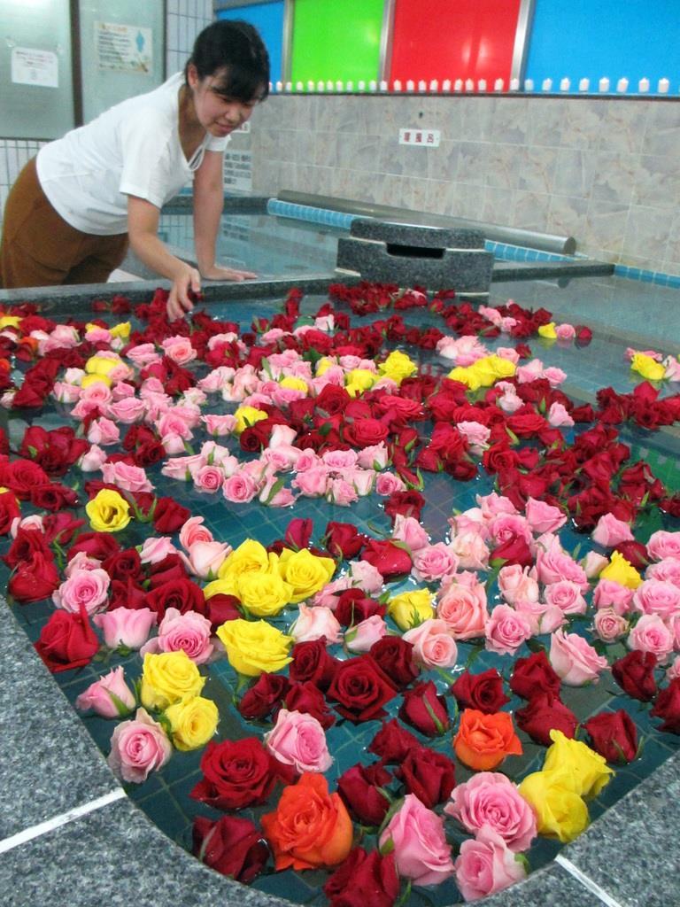 赤、ピンク、黄色のバラが湯船いっぱいに広がる薔薇風呂。目も体も癒やされる=大阪市東淀川区の昭和湯