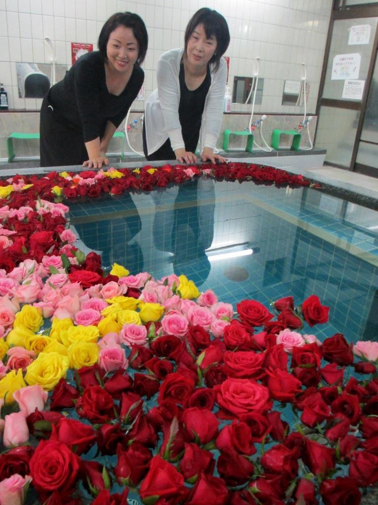 赤、ピンク、黄色のバラが湯船を覆った薔薇風呂に、女性たちもうっとり=大阪市東淀川区の昭和湯
