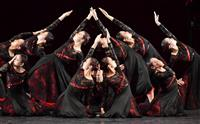 【日本高校ダンス部選手権】ポーがモチーフ「ゾッと」させる 大阪・樟蔭