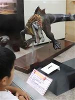 スピノサウルス類の歯の化石展示 和歌山・自然博物館