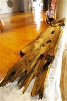 桜井茶臼山古墳の木棺 橿考研で初の一般公開