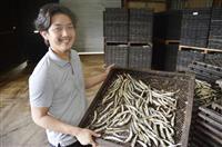 日本一の「雑節」アピール 天草・津田さん、各地で商談や香港輸出も