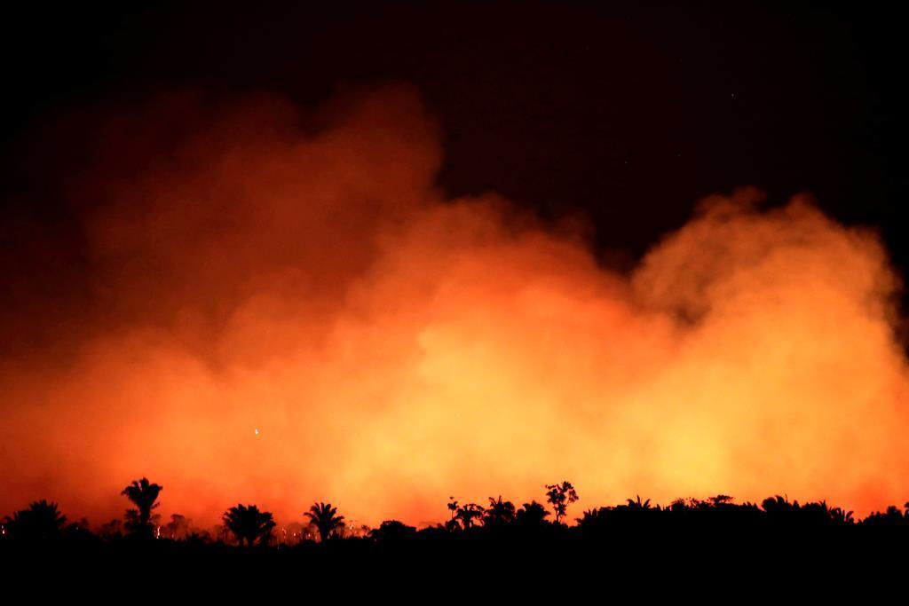 アマゾン最大規模の火災 仏大統領「緊急事態、G7で議論を」 …