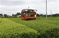 AI無人機で茶摘み実証実験 人手不足解消のスマート農業に注目 鹿児島