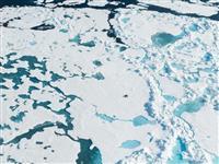 マイクロプラスティックは「北極圏の雪」にまで蓄積していた。でも、どこから飛んできたのか…