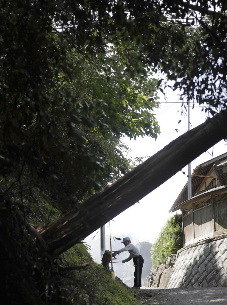 台風15号による倒木が残る中、枝などを片付ける住民=12日午前11時6分、千葉県富津市