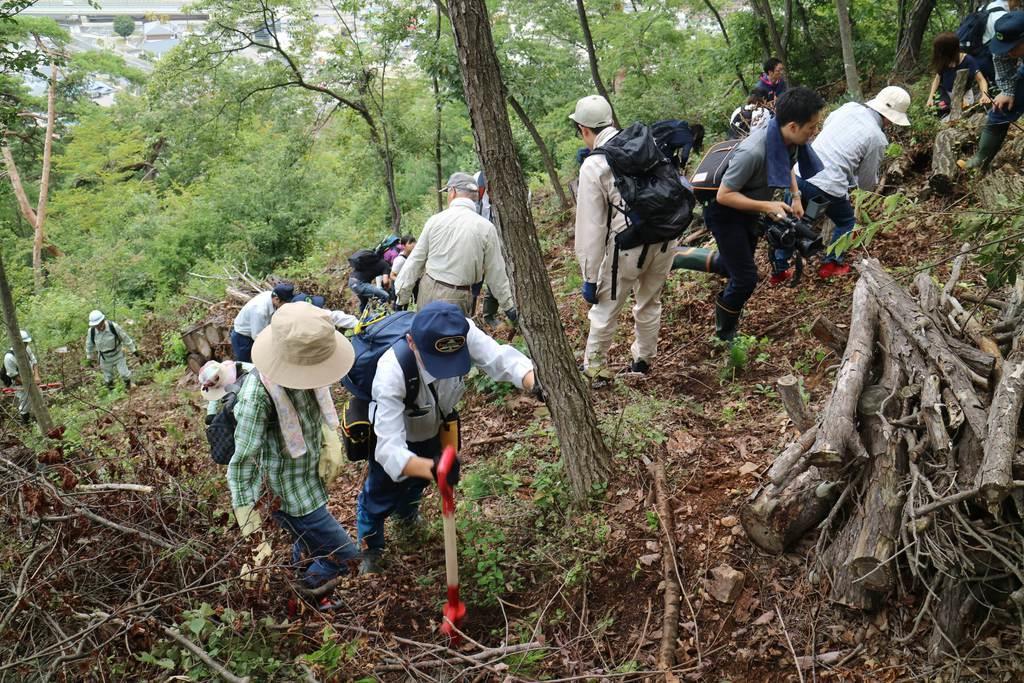 千歳山のアカマツを再生しようと苗木100本が植樹された=12日、山形市平清水(柏崎幸三撮影)