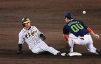 阪神の新人近本が30盗塁…「チームのために一つでも多く」