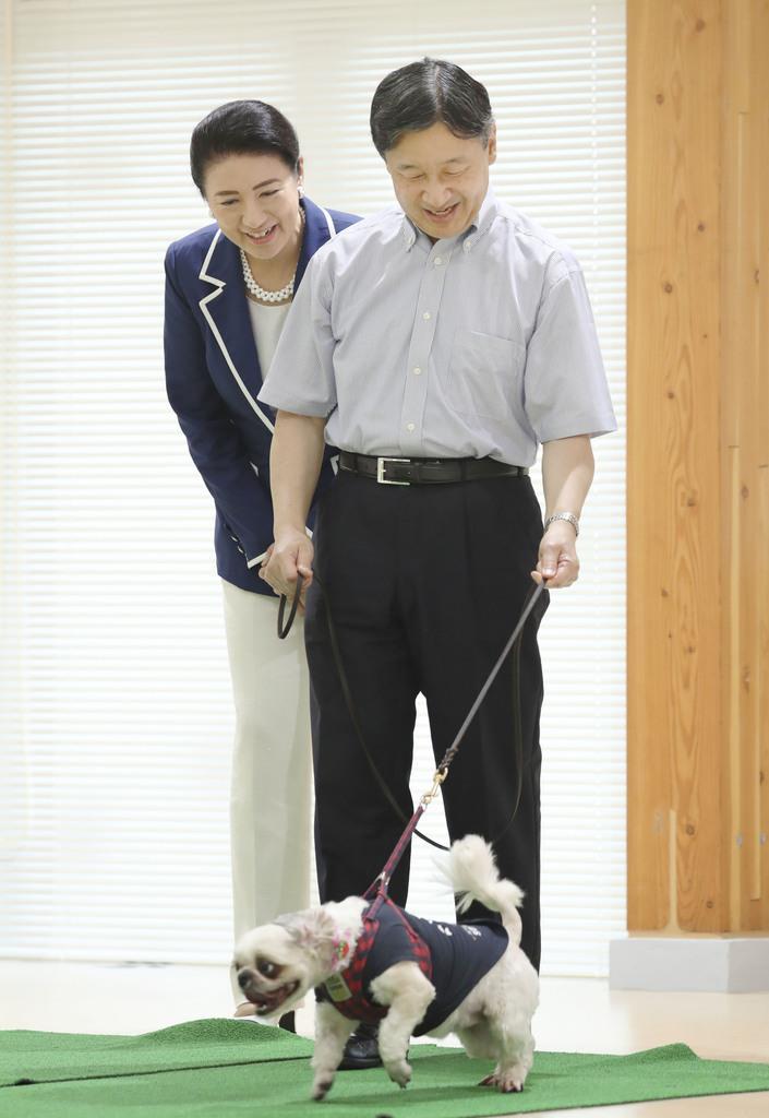秋田県動物愛護センターで保護された犬の「リーダーウォーク」を体験される天皇、皇后両陛下=7日、秋田市