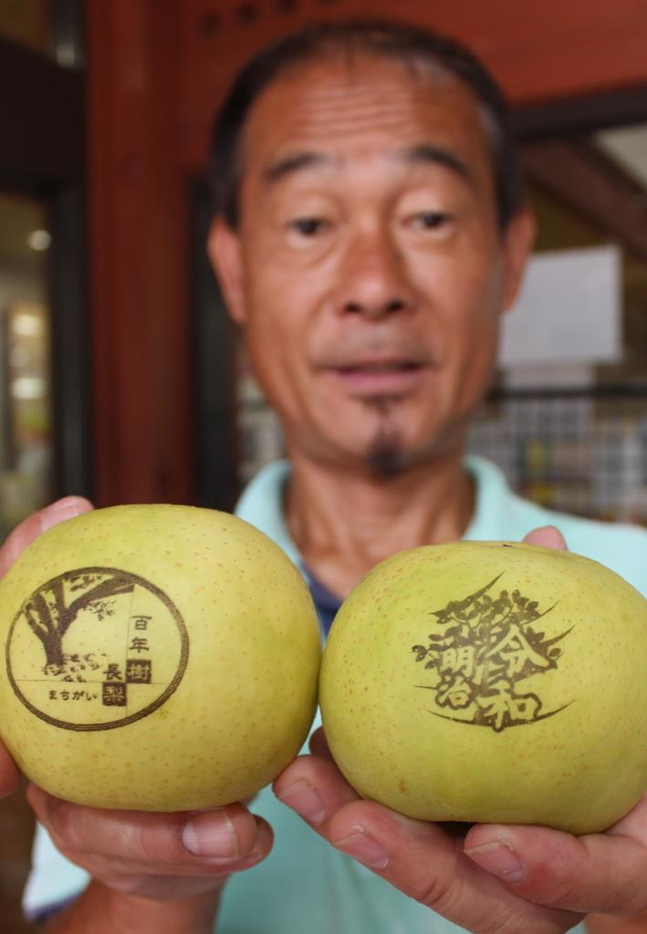 「令和」や「明治」がデザインされた長寿梨を手にする板持さん=島根県安来市