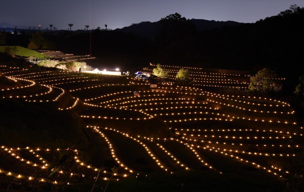 昨年の「棚田夢灯り」。約3000基の灯籠の光が「下赤阪の棚田」を包んだ=千早赤阪村