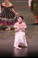 吉田都、バレエ人生の集大成 引退公演 NHK・BS放送