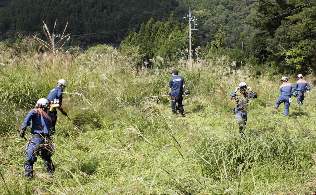 草を刈って小倉美咲さんを捜索する消防隊員ら=26日午後、山梨県道志村