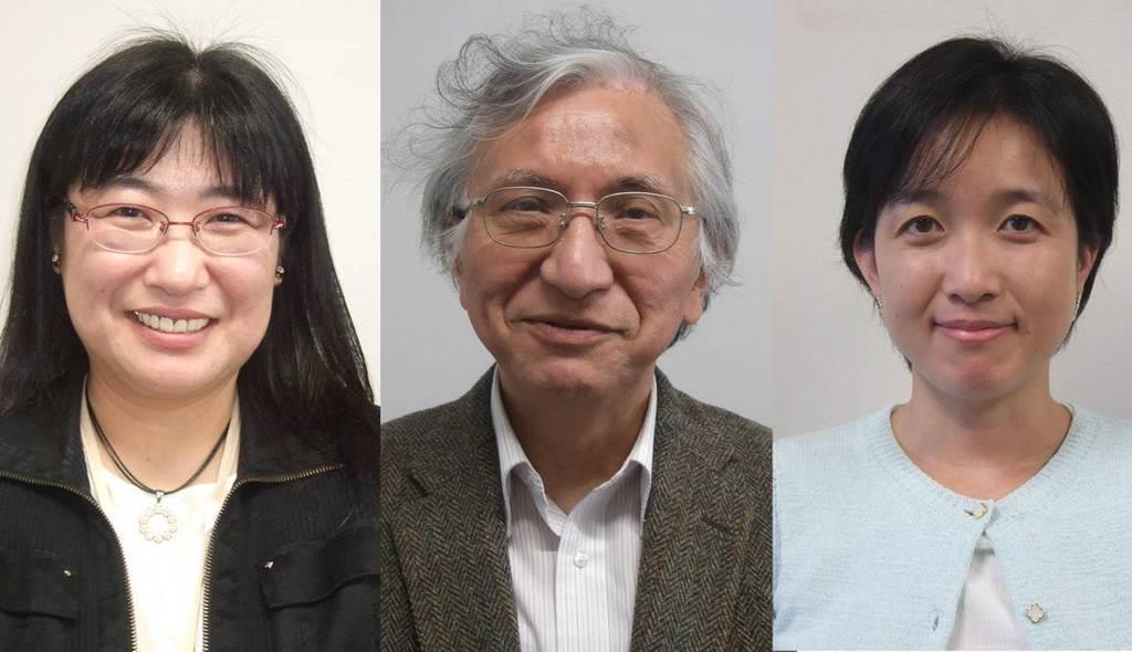 左から、東京電機大システムデザイン工学部の徳永弘子共同研究員、武川直樹教授、谷友香子・東京医科歯科大助教