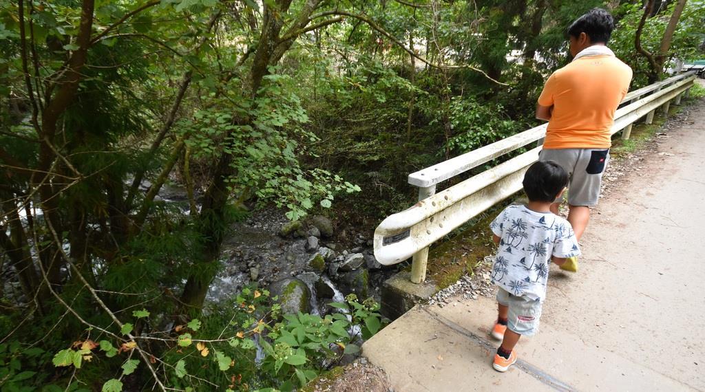 小倉美咲さんが行方不明なった付近の橋。下を小川が流れている=28日午後、山梨県道志村(渡辺浩撮影)