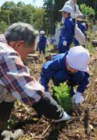 山形市制130周年、園児らがスギ苗1200本植樹