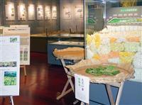 昆虫や植物の研究リード 九大農学部創立100周年、椎木講堂「至宝展」で実績紹介