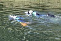 山梨で不明の7歳女児捜索 相模原、下流ダム周辺