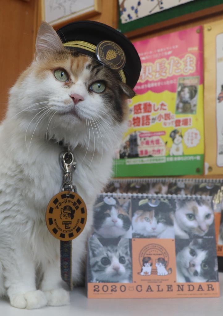 記念撮影に応じる「二タマ」と卓上カレンダー=和歌山市の伊太祈曽駅