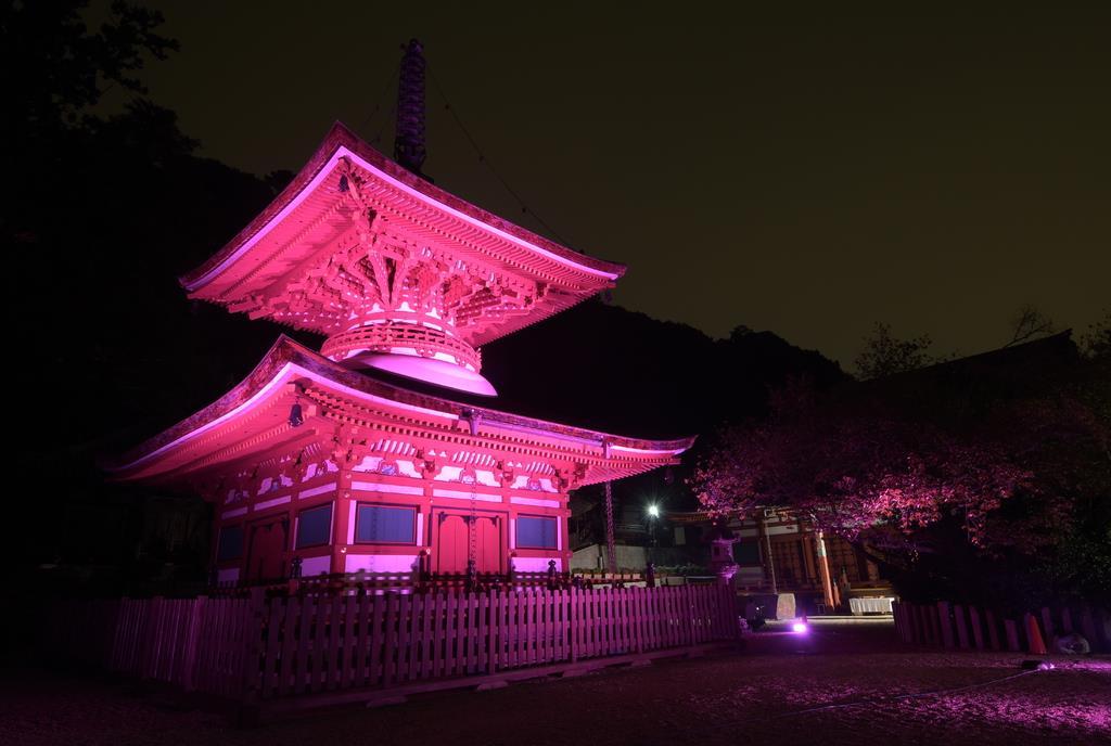 ピンク色にライトアップされた金剛寺の多宝塔=大阪府河内長野市(長時間露光)