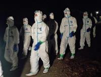 猛威を振るう豚コレラ最前線、苦悩する養豚農家