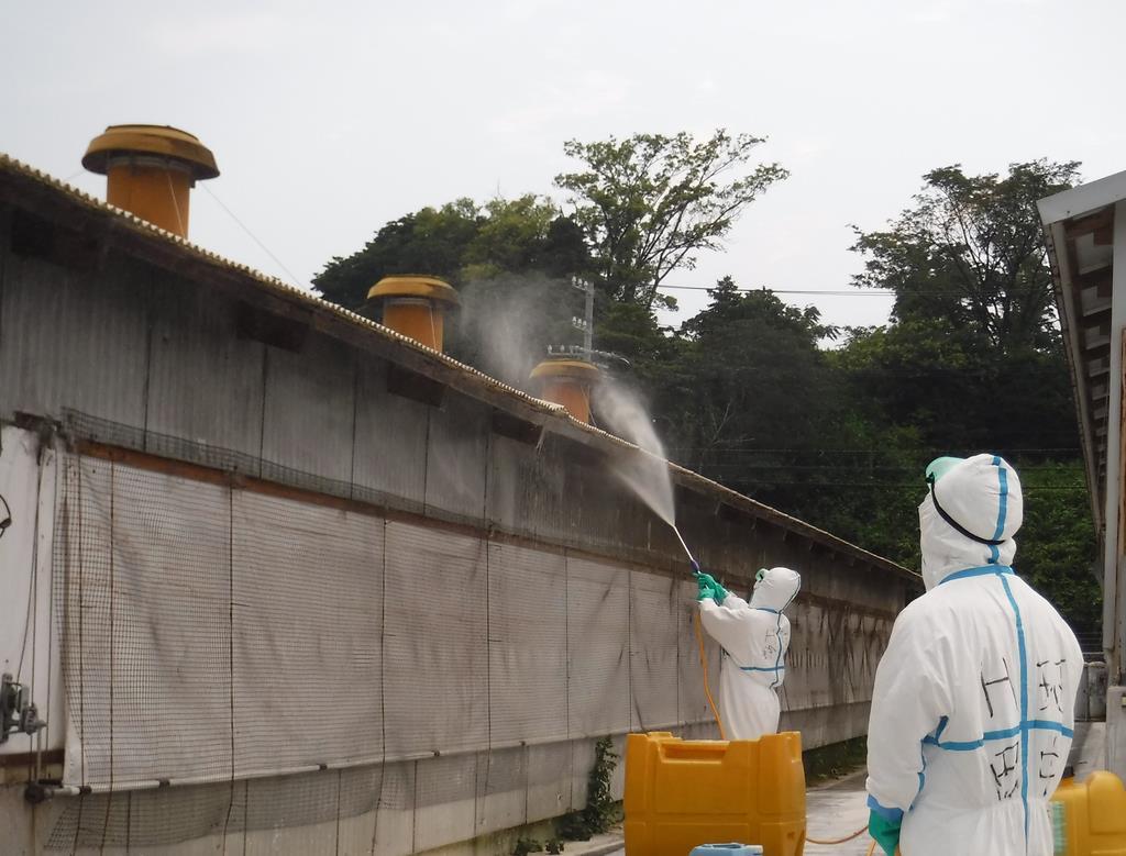 豚コレラの感染が確認された三重県いなべ市の養豚場を消毒する作業員=7月29日