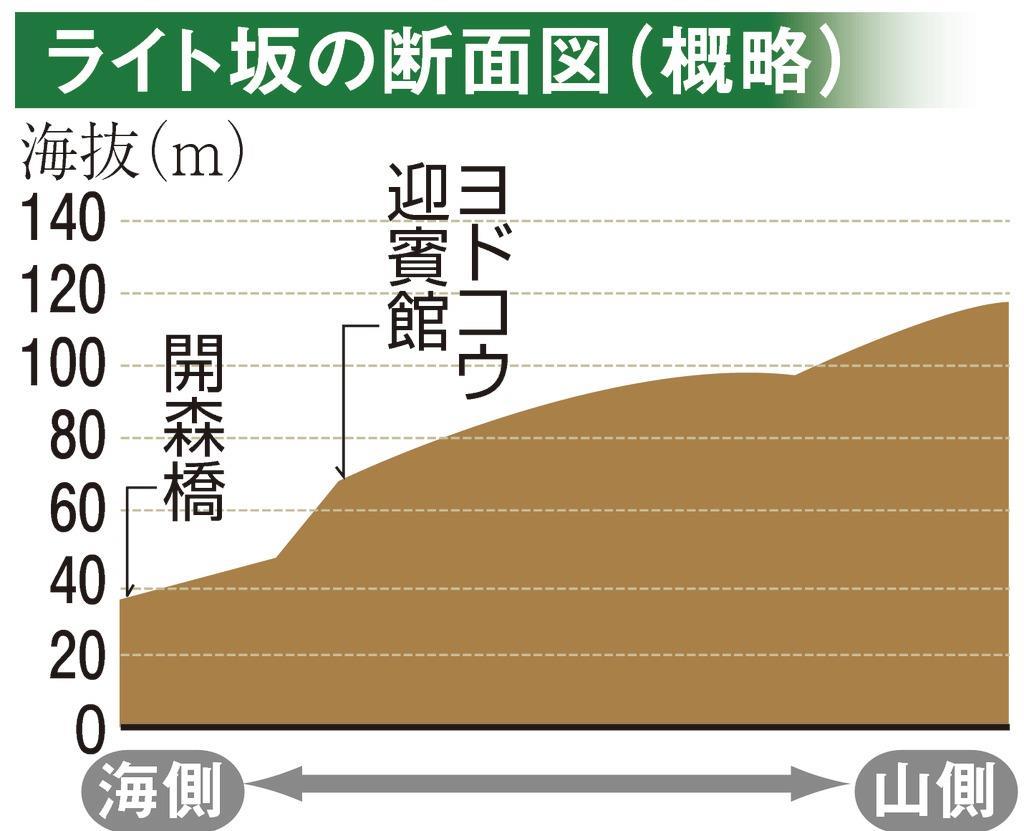 ライト坂の断面図(概略)