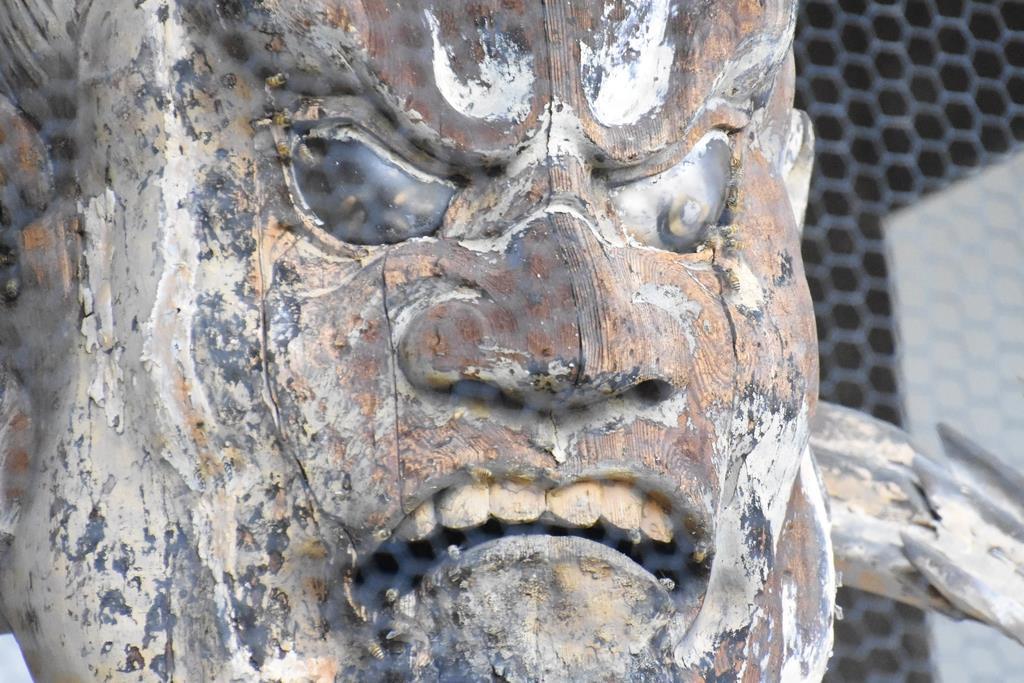 仁王像の阿形像頭部をはうミツバチ=奈良県葛城市の当麻寺