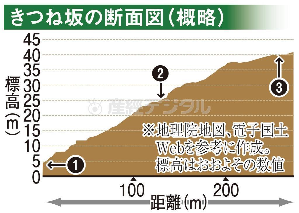 きつね坂の断面図(概略)
