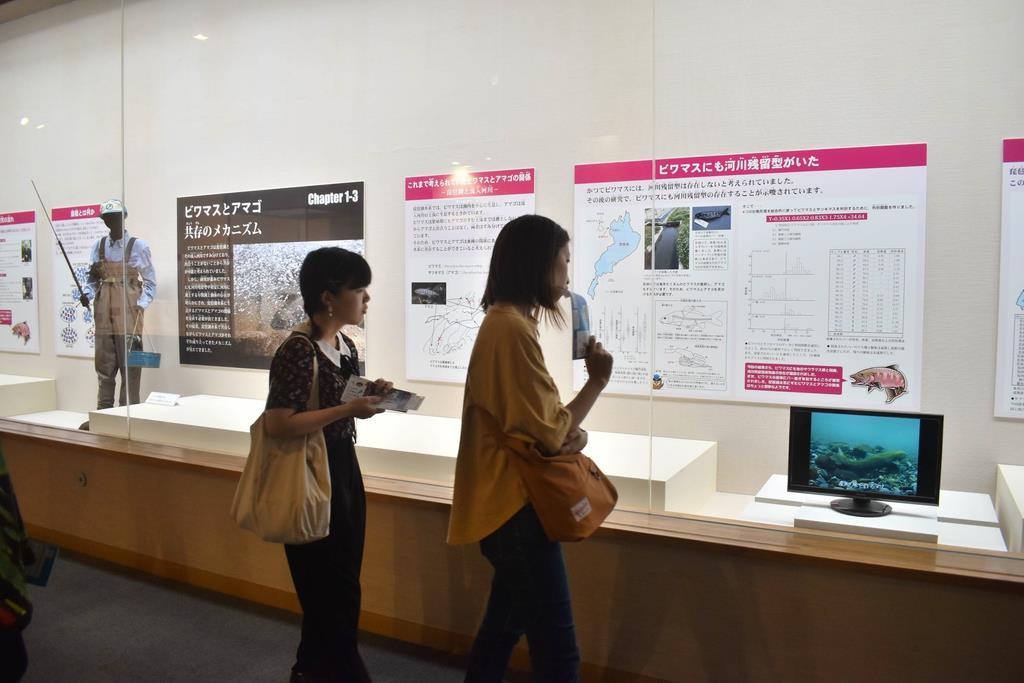 ビワマスの生態を紹介するパネルを眺める来館者=滋賀県草津市